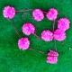 Guirnalda de pompones. Varios colores